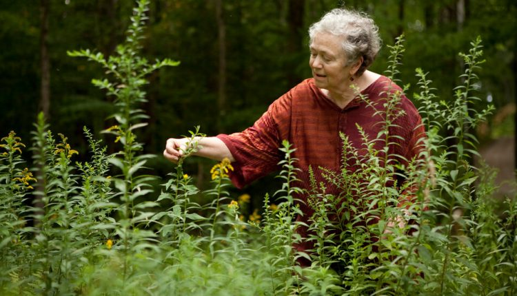 Mary Catherine Bateson Dies at 81; Anthropologist on Lives of