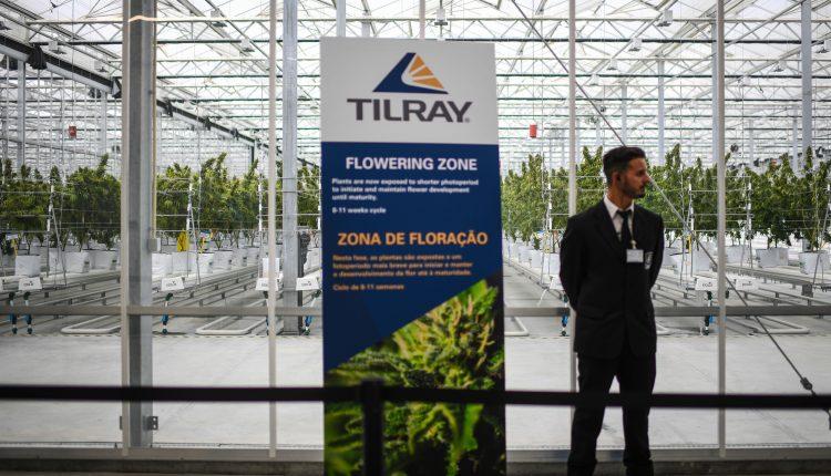 Tilray stock rallies on pot distribution agreement with Grow Pharma