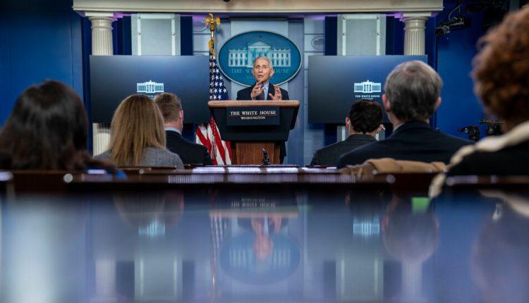 Meet the key members of Biden's Covid-19 response team.